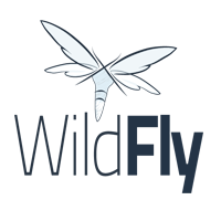 wildfly on cloud on azure aws google cloud